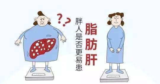 减肥为何减出脂肪肝?