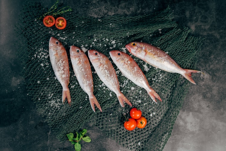科普:如何正确吃鱼?